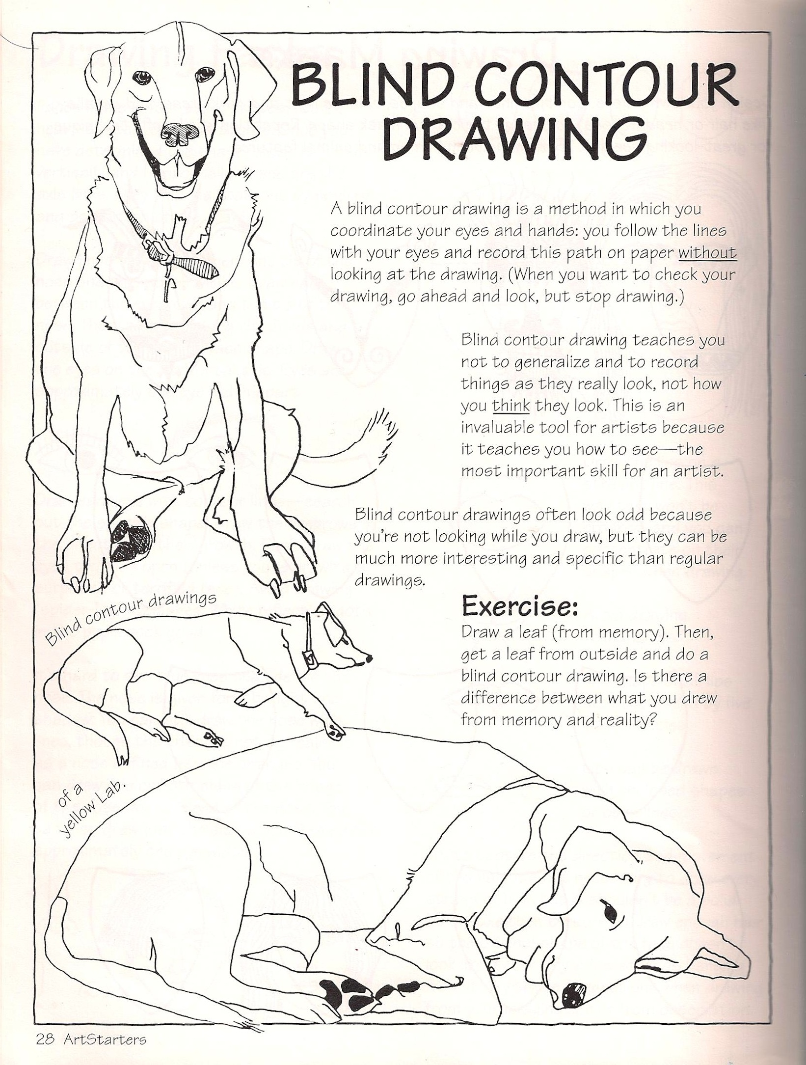 Contour Line Drawing Pdf : Images about drawing handouts posters on pinterest